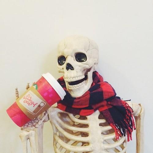 Skellie - bo xuong Halloween noi tieng the gioi-Hinh-14