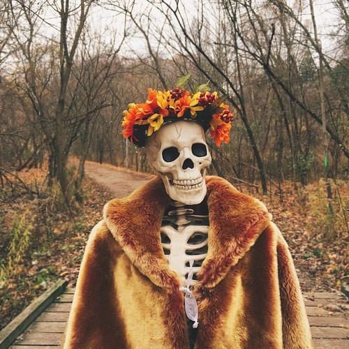 Skellie - bo xuong Halloween noi tieng the gioi-Hinh-4