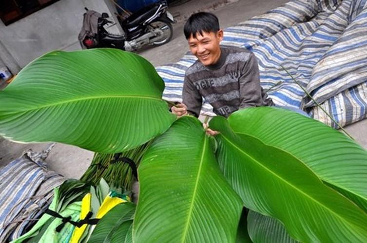 Su that ly thu ve la dong goi banh chung ngay Tet-Hinh-3