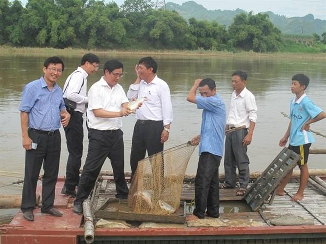 Su that kinh ngac ve ca bong dac san Tuyen Quang-Hinh-3
