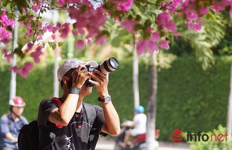 Lac vao cung duong hoa giay dep nhat Nha Trang-Hinh-7