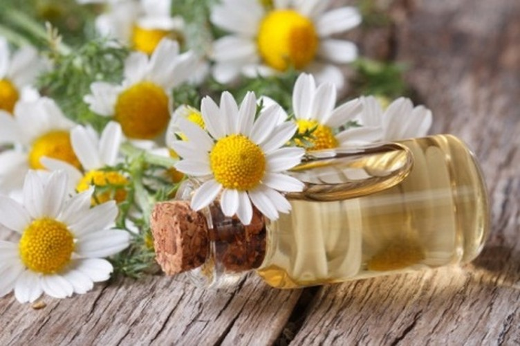 4 loai hoa dep duoc su dung nhieu trong nganh cong nghiep my pham-Hinh-6