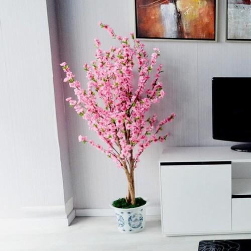 Muon kieu trang tri nha dep voi hoa dao don Tet-Hinh-4