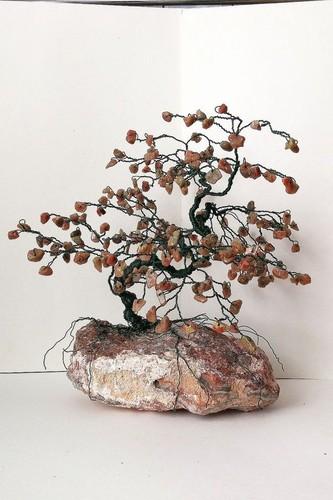 Doc dao nhung chau bonsai bang da quy tuyet dep