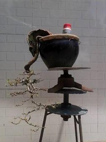 Ngam loat bonsai dang thac do sieu doc la