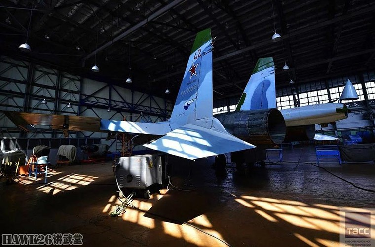 Bat ngo: Nga hoi sinh Su-24, Su-25 da vut ra bai rac-Hinh-7