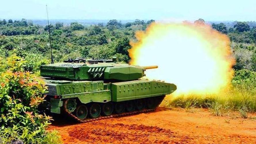 Can canh sieu tang Leopard 2RI cua lang gieng Indonesia-Hinh-7