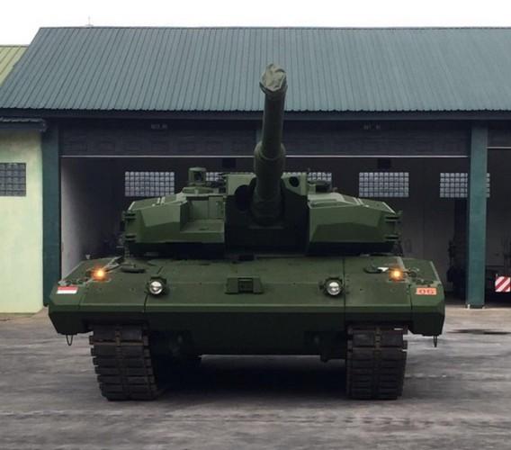 Can canh sieu tang Leopard 2RI cua lang gieng Indonesia-Hinh-8
