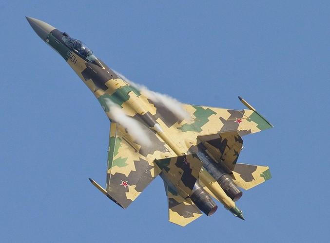 """Diem mat """"ca ho"""" dong chien dau co huyen thoai Sukhoi Su-27-Hinh-8"""
