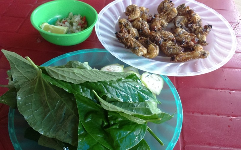 Coc coc nuong - mon doc nhat vo nhi xu Quang-Hinh-6