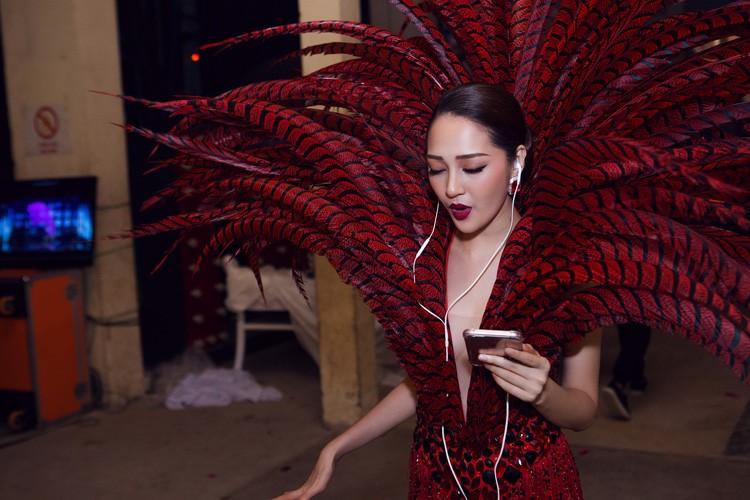Hau truong tat bat trong liveshow 12 ty cua Dam Vinh Hung-Hinh-11