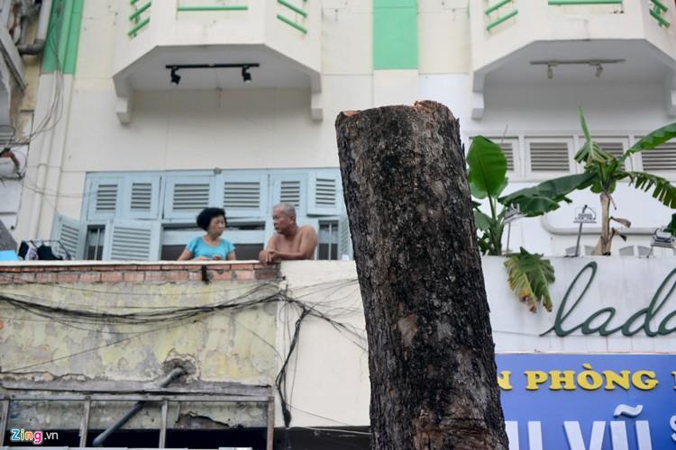 Anh: Don hang dau tren 50 nam tuoi o trung tam Sai Gon-Hinh-11