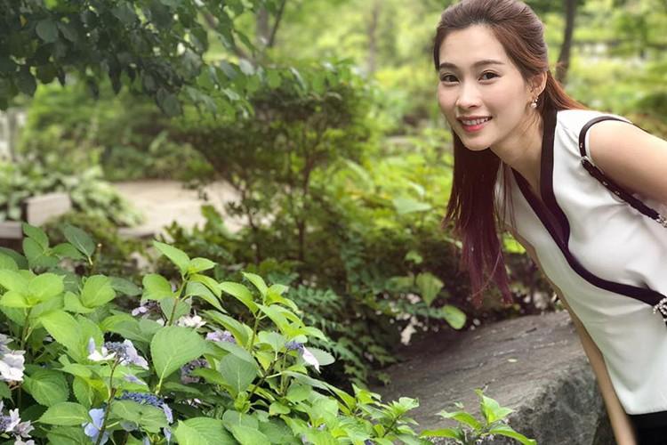 Roi Hoa hau VN 2012, Dang Thu Thao - Do Hoang Anh ra sao?-Hinh-6