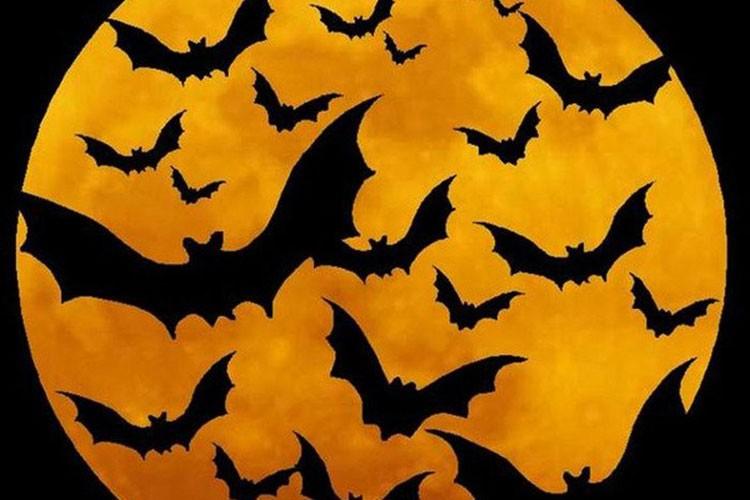 Rung ron nhung truyen thuyet bi an ngan nam ve Halloween-Hinh-2