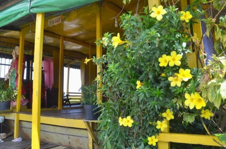 La mat voi Chua Vang noi tren Bien Ho-Hinh-8
