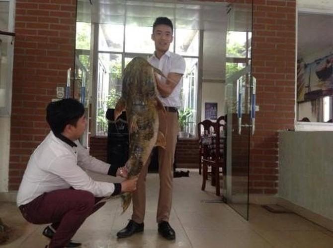 Boc gia chat chua cua thuy quai khong lo bi mac luoi-Hinh-2