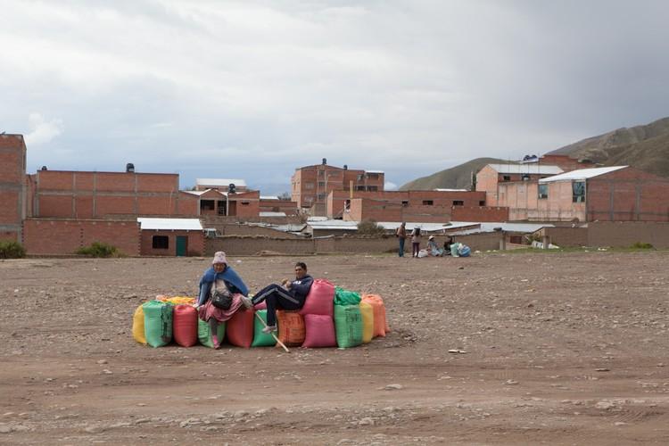 "Xem nong dan Bolivia thu hoach ""thuc pham vang""-Hinh-7"