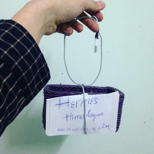 """Bo suu tap """"chat"""" khong kem tui Hermes cua Ngoc Trinh-Hinh-2"""