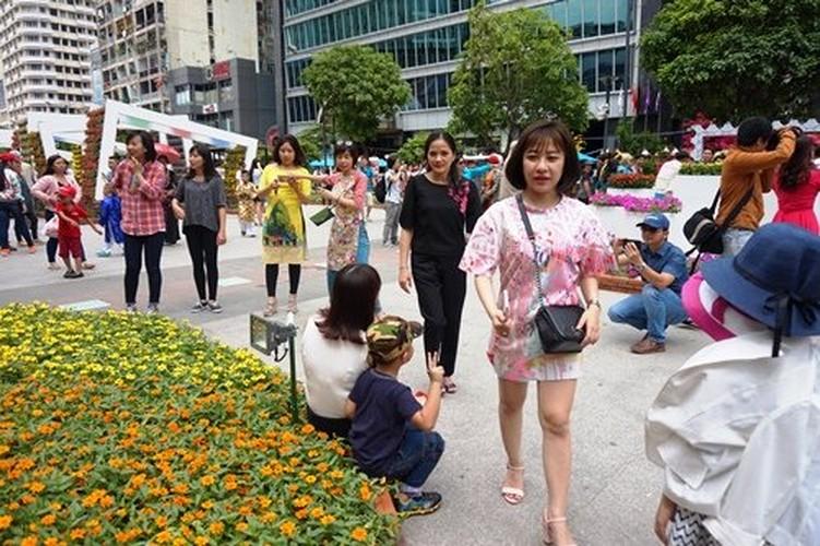 Hinh anh khong dep tren duong hoa Tet pho Nguyen Hue-Hinh-5