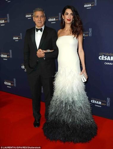 Bo suu tap hang hieu cua vo George Clooney khi bau bi
