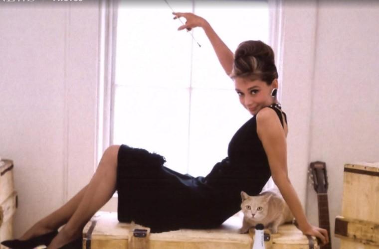 Nhung khoanh khac de doi cua Audrey Hepburn-Hinh-7
