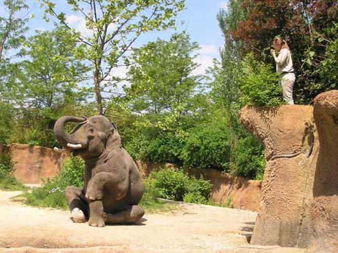 Voi khong lo the hien ban linh Yoga sieu viet-Hinh-10