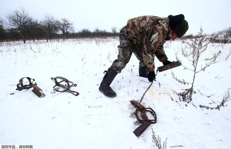Ghe ron canh bat giet soi o khu vuc hoang da o Ukraina-Hinh-4