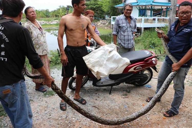 Can canh bat tran khong lo nap trong nha tan cong nguoi-Hinh-10
