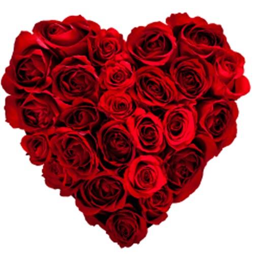 Top thong ke bat ngo ve Valentine-Hinh-2
