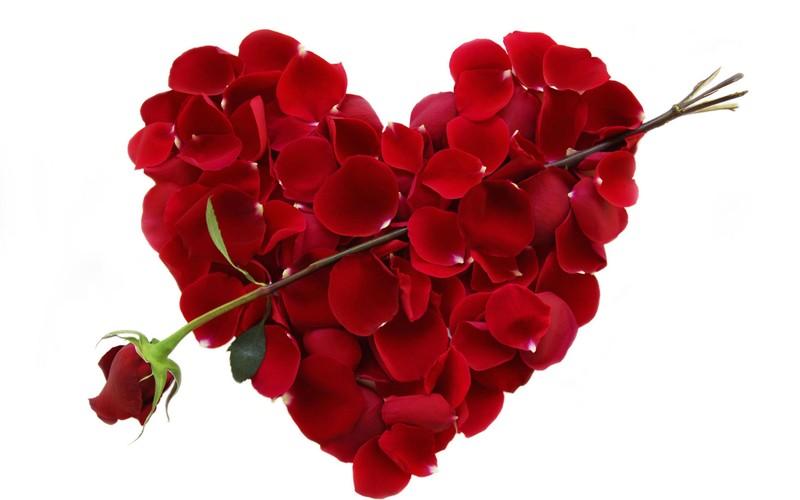 Top thong ke bat ngo ve Valentine
