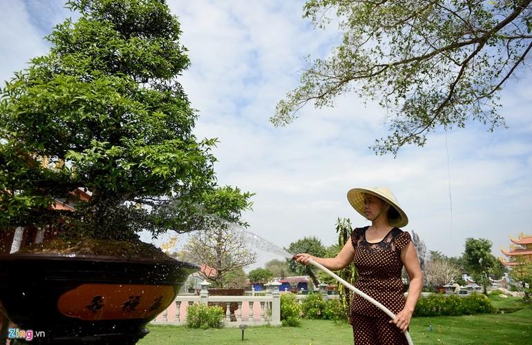 Nha tho To cua Hoai Linh trang hoang long lay don Tet-Hinh-11