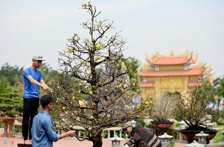 Nha tho To cua Hoai Linh trang hoang long lay don Tet-Hinh-7