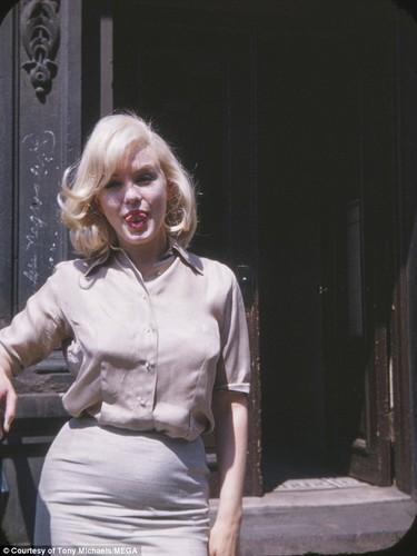 Anh chua tung cong bo ve Marilyn Monroe khi mang thai-Hinh-3