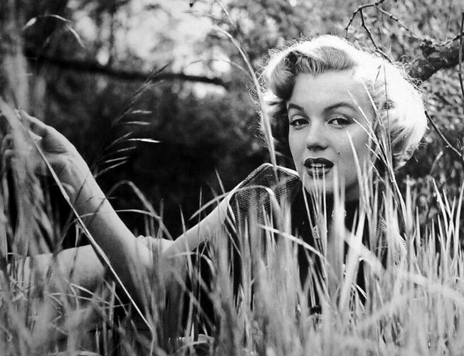 Marilyn Monroe bi giet vi su ton tai nguoi ngoai hanh tinh?-Hinh-8