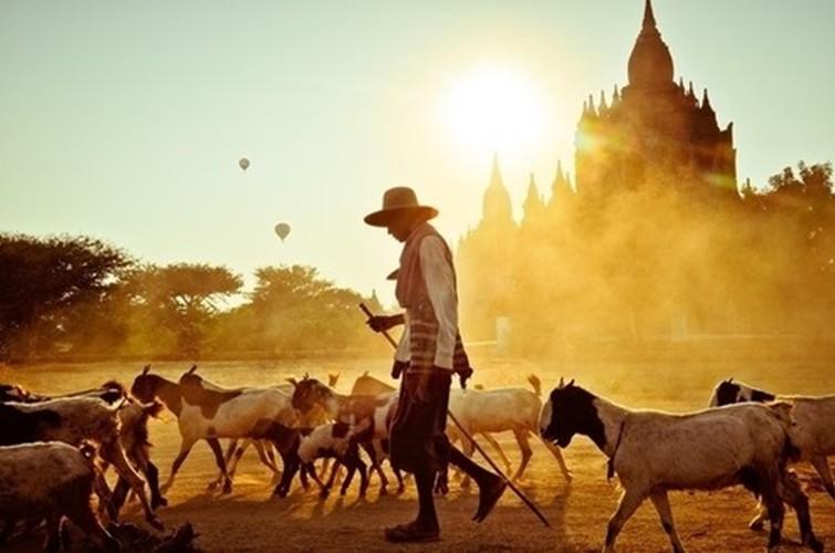 Loat anh me dam long nguoi ve dat Phat Myanmar-Hinh-8