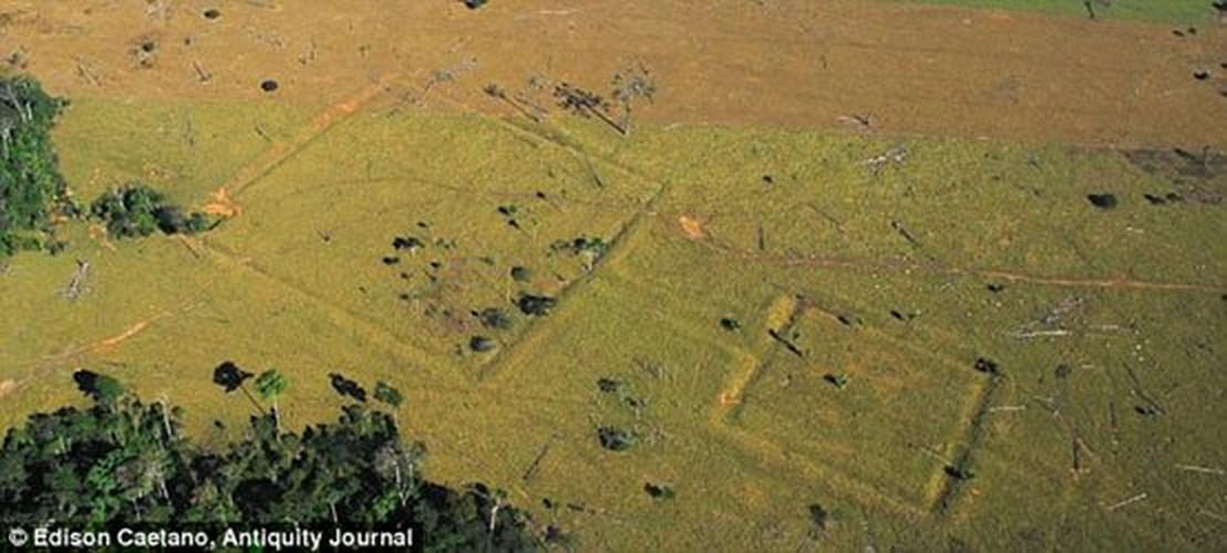 Giai ma cau truc 3.000 nam tuoi trong rung ram Amazon-Hinh-10