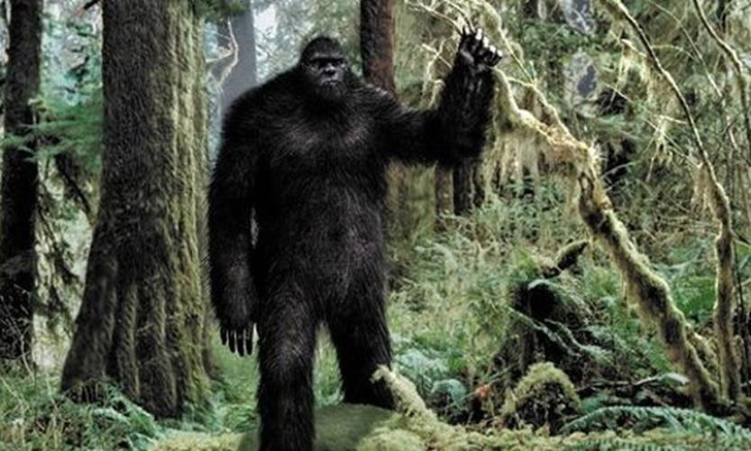 Vi sao Bigfoot la bi an kho giai nhat moi thoi dai?