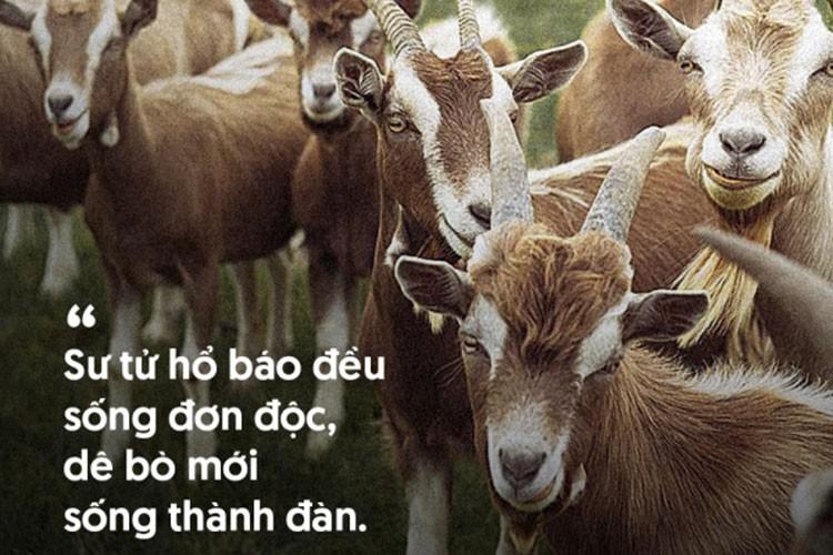 """Nhung cau noi """"phu nhung chuan"""" ban nen thuoc long-Hinh-10"""