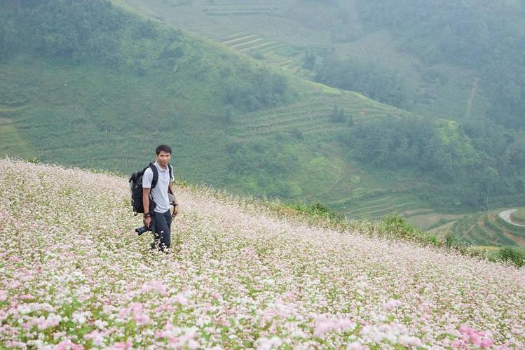 Ngam hoa tam giac mach no som o Bac Ha, Lao Cai-Hinh-9