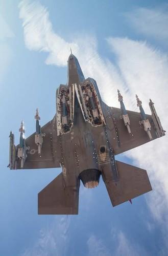 Chung kien kho vu khi cua tiem kich tang hinh F-35-Hinh-3