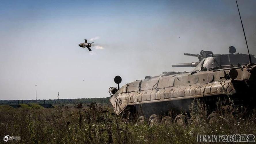 Cuc hiem canh BMP-1 ban ten lua chong tang AT-3-Hinh-4
