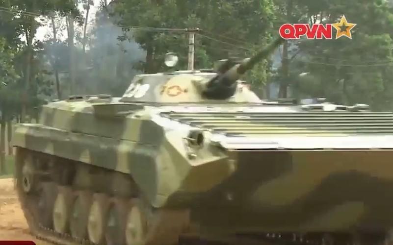 Muc kich trung doan bo binh co gioi cua Viet Nam tac chien-Hinh-2