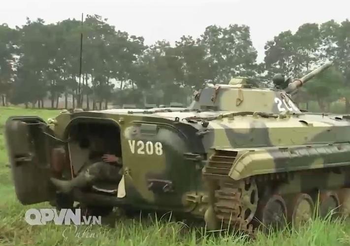 Muc kich trung doan bo binh co gioi cua Viet Nam tac chien-Hinh-4