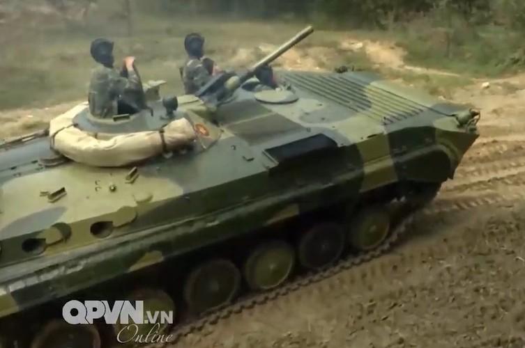 Muc kich trung doan bo binh co gioi cua Viet Nam tac chien-Hinh-9