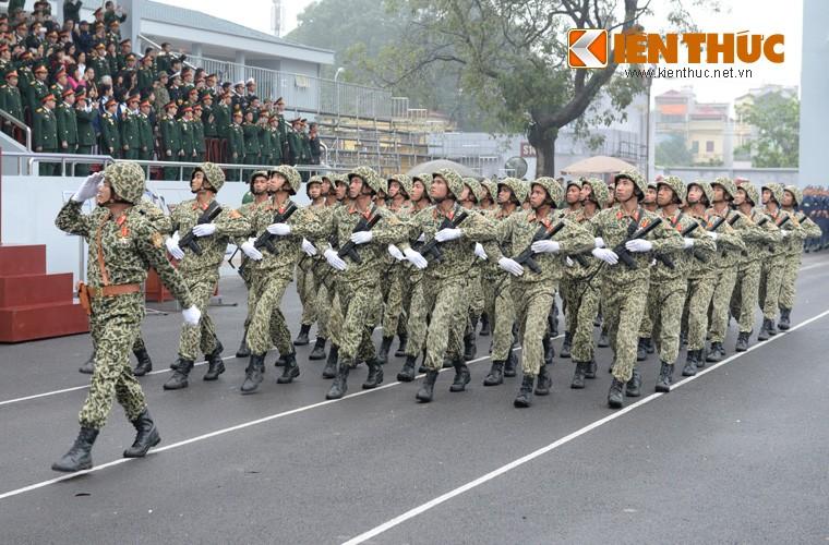 Hoanh trang sinh nhat lan thu 50 cua Dac cong Viet Nam-Hinh-4