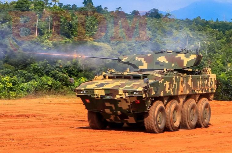 Muc kich xe tang – phao Malaysia na dan hoanh trang-Hinh-3