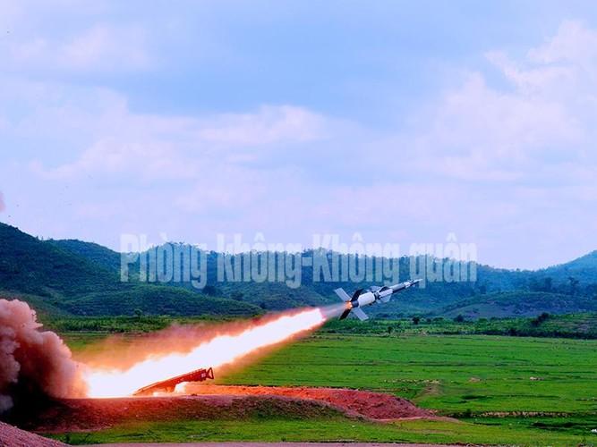 Gioi: Viet Nam tu nang cap 12 to hop ten lua phong khong-Hinh-6