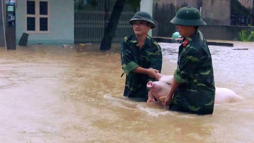 Ron nguoi canh dong nuoc lu can quet cac tinh Bac Bo-Hinh-10