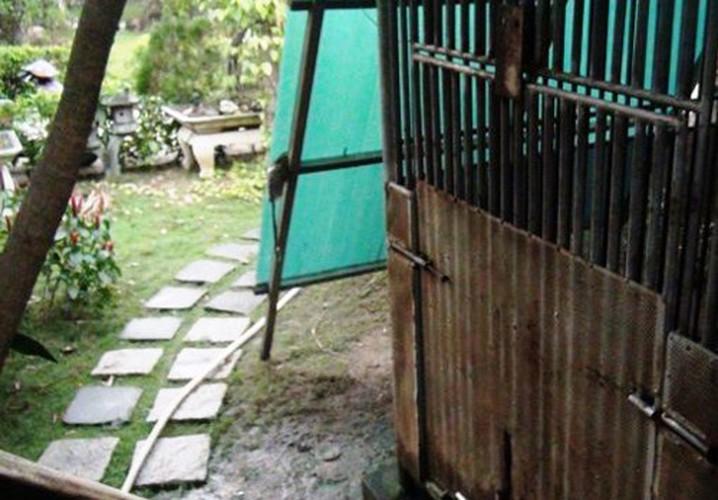 Nhung vu thu du tan cong chu the tham nhat-Hinh-2