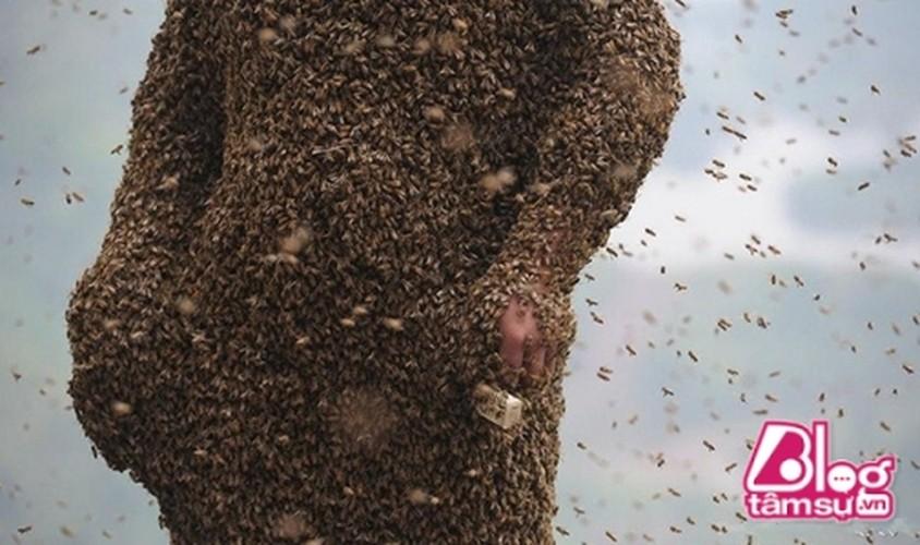 Cho 450.000 con ong dot, got sach ai nay deu choang khi nhin thay...-Hinh-2